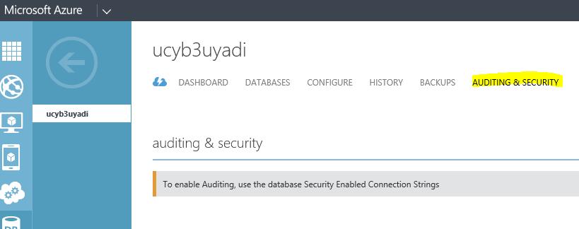 Server Audit Settings